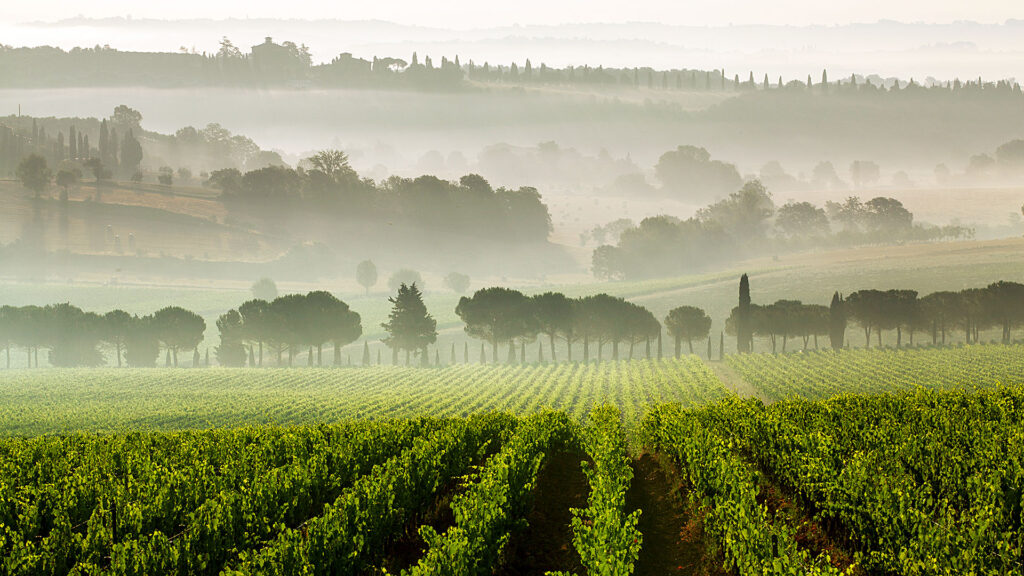 A Tuscany bewitched by fog... is the location of the Twilight saga