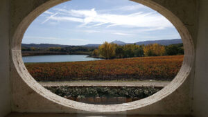 Autumn in Tuscany - Carpineto's winery overlooking vineyards and the lake