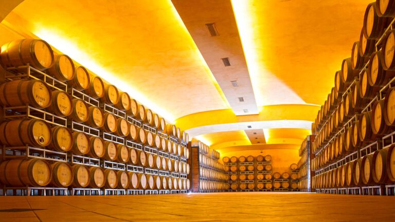 Chianti Classico and Supertuscans aging and refining in wood at Tolaini