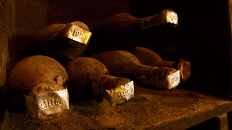 Private wine archive with bottles from 1904 vintage to today