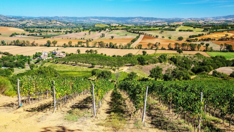 Tuscany, Maremma is its southern and still wildest area