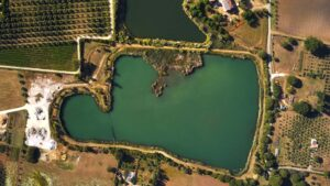 Visit our vineyards around the only lake in the Bolgheri area
