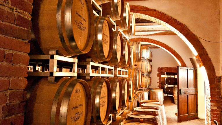 WS TOP 100 for a modern but classic Tuscan wood and bricks refining cellar