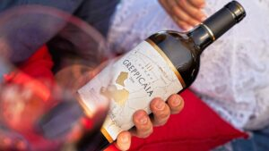 Wine Spectator's TOP 100 Bolgheri Greppicante plus its brother Greppicaia in vertical tasting