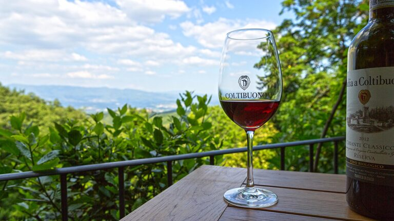 CHIANTI CLASSICO private tasting witha an exclusive view