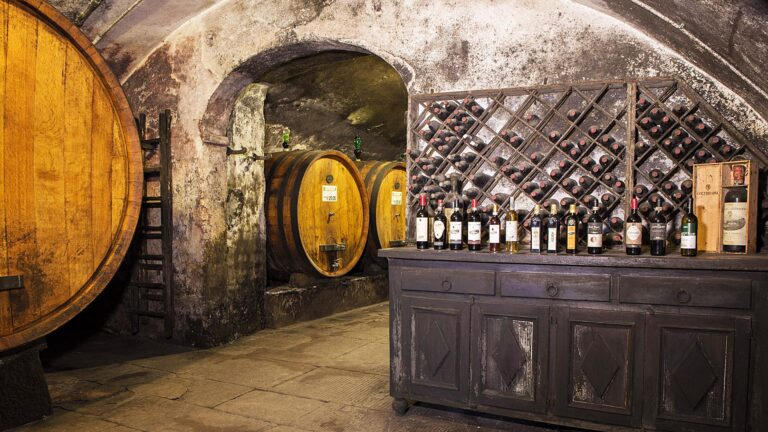 Wine experiences in Tuscany at their BEST - Walking in ancient cellars