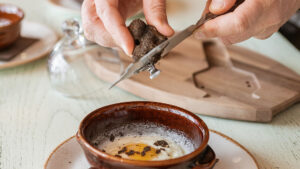 Cooking with truffles can be really simple... but errors will be expensive!!!