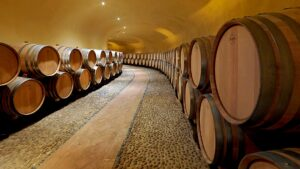 Wine tastings of this very high level are priceless, they are simply reserved for professionals