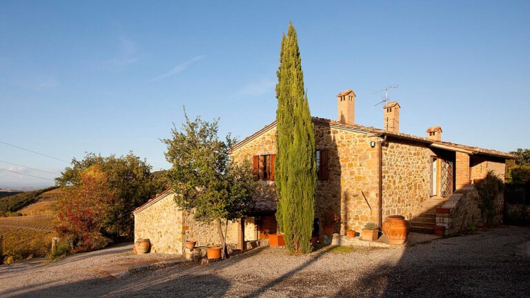 Classic FAMILY run farm in TUSCANY - Vineyards, olive groves, traditional home cooking
