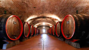 Private vertical tasting of 6 old vintages in the choreographic barrel cellar