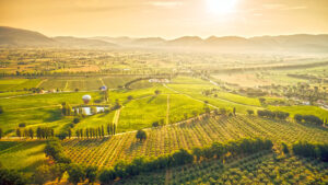 UMBRIA region is the Green Hearth of Italy
