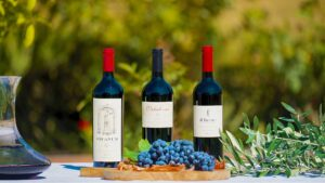 Wine Spectator's TOP 100 Supertuscan Il Fauno and its brothers